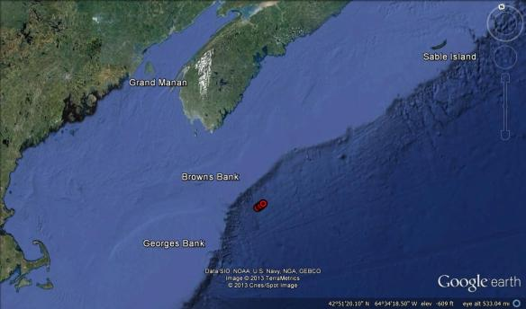 Location of four basking sharks sighted on April 15, 2013. They were seen very close together, which is why the markers are overlapping in this map.